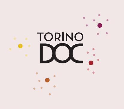 Progetto per Camera di Commercio di Torino